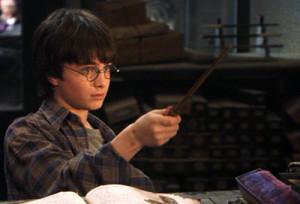 Купить волшебную палочку Гарри Поттера Украина, Киев, Днепропетровск