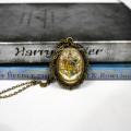 Кулон с гербом Хогвартса, Гарри Поттер
